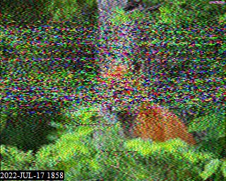 22-Sep-2021 18:32:26 UTC de PAØØ41SWL