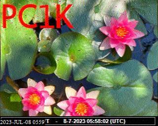 History #28 de PA0041SWL